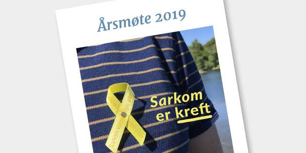 Årsmøtedokumenter 2019