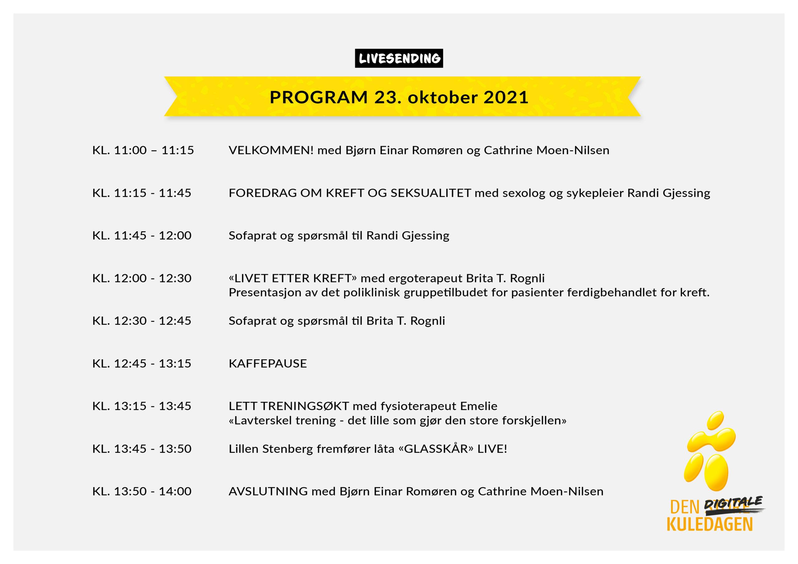 Den digitale Kuledagen_2021_Program